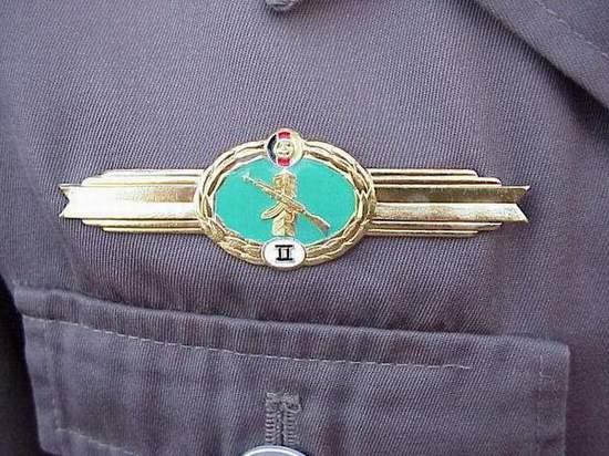DDR Grenz Qual badge.JPG